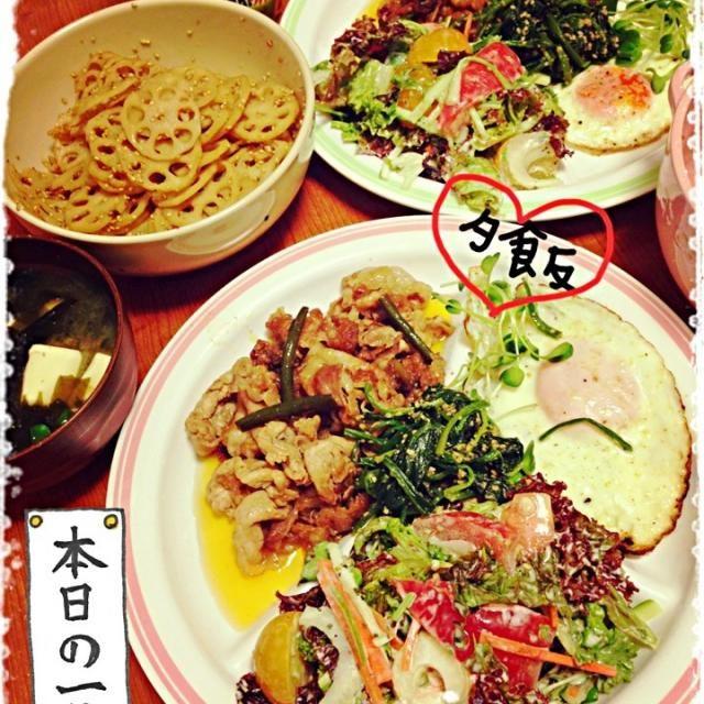 サニーレタス、パセリ、セロリ、トマト(赤・黄色)ニンジン、きゅうりをクリームドレッシングとバジルを和えて♡味がしっかりしてうんまいよ。レンコン食べたくなり味付けした後、ごま油と一味で辛くしましたー\(^o^)/ - 21件のもぐもぐ - ニンニクの芽豚肉とサラダ。 by hanacooooo