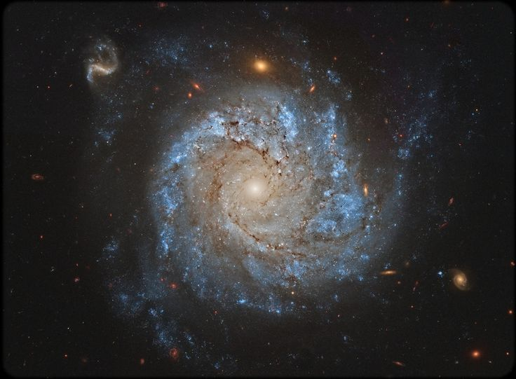 NGC 1309: Spiral Galaxy and Friends Love Astronomy Picture of the Day follow @CutePhoneCases #Astronomy #PictureoftheDay http://ift.tt/1UUoVSO