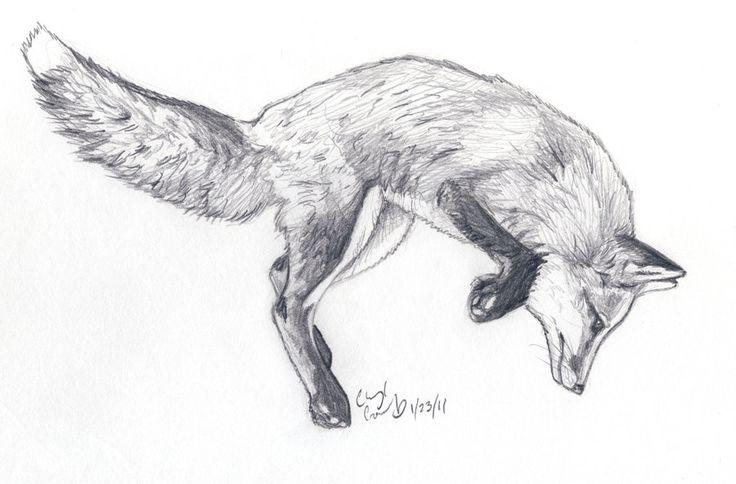 Fox Jump sketch by ~silvercrossfox on deviantART