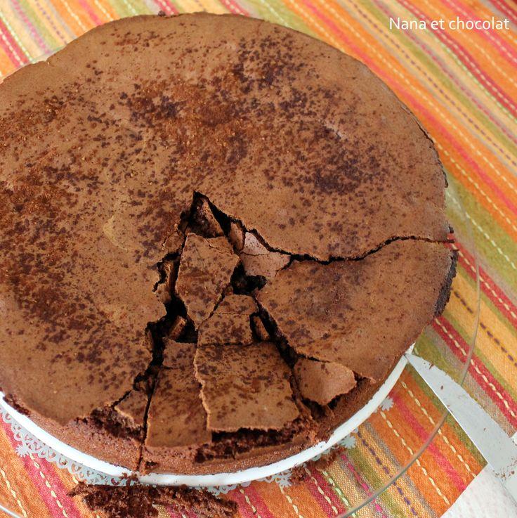 Gateau au chocolat moelleux hellmann's