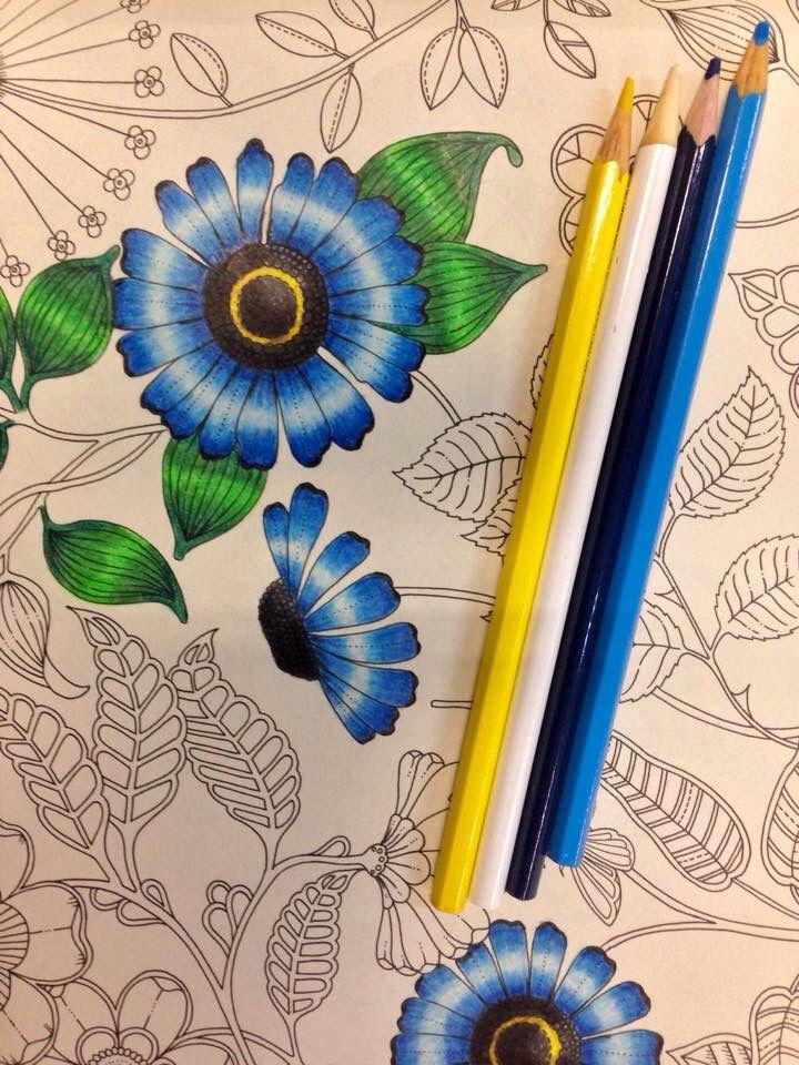 как разукрасить картинку карандашами