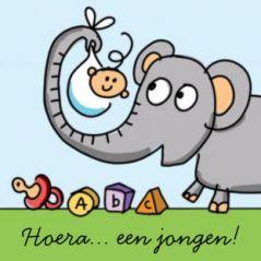 Geboortekaart drieluik met dieren en een baby jongen. Vrolijk drieluik geboortekaartje met diverse dieren als de olifant die het pasgeboren jongetje vasthoudt, de aap en giraf die samen een banner vasthouden met de naam erop, en tot slot een papegaai op een takje waaraan een kalender hangt met de datum van de geboorte.