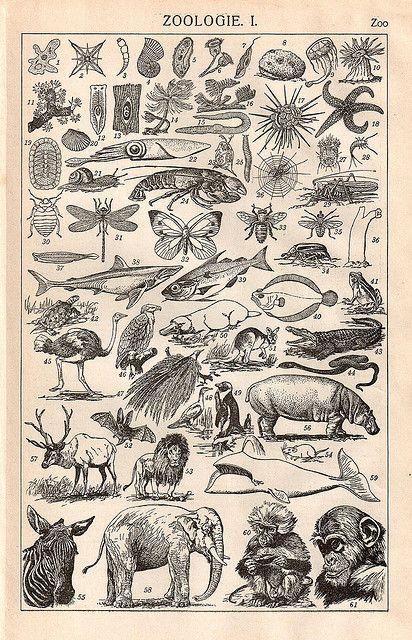 Vintage German Dictionary page by HA! Designs - Artbyheather, via Flickr