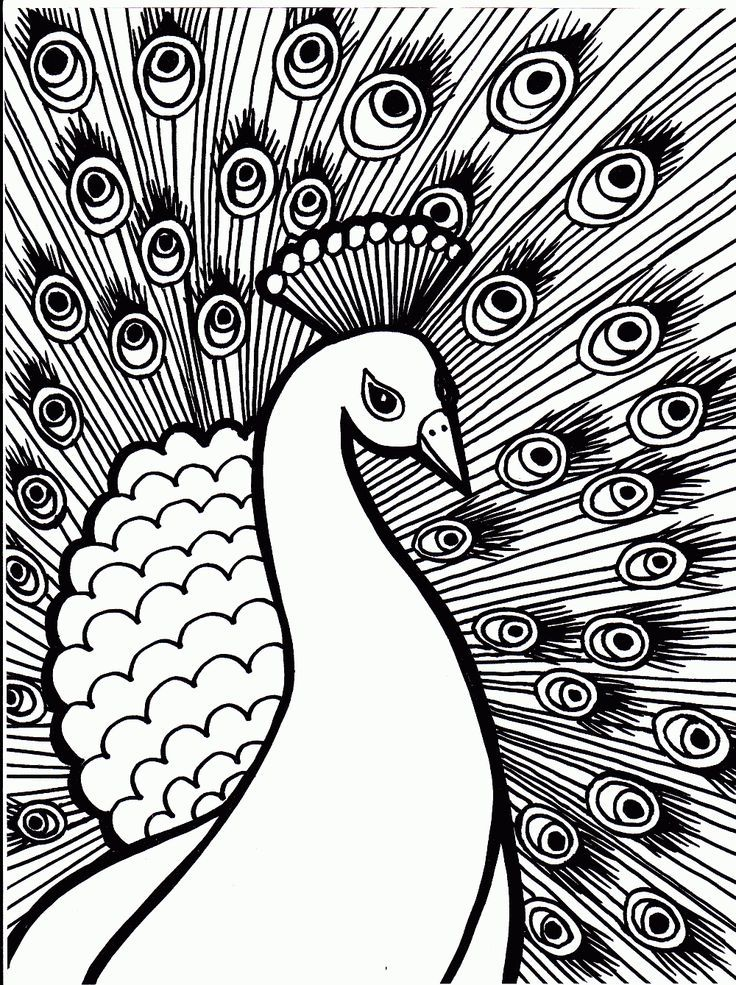 Free Printable Peacock Coloring Pages For Kids | Abstract ...