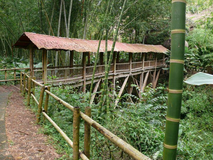 Jardin Botanico del Quindio - Calarca - Colombia