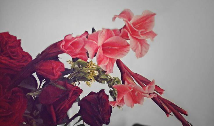Fotografia Flores
