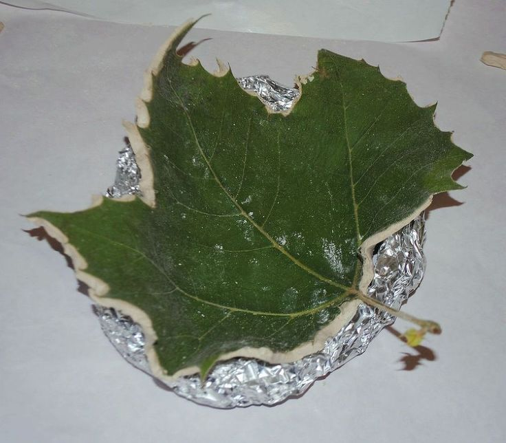 Hometalk :: This is the most awesome leaf craft ever