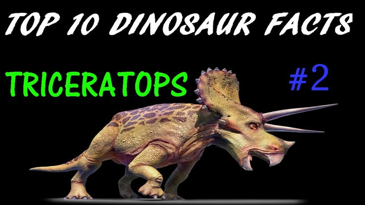 Top 10 Dinosaur Facts | Triceratops #2
