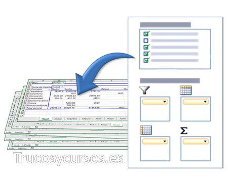 Crear una hoja de Excel para cada valor de filtro de la tabla dinámica