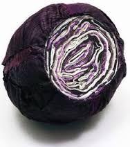 Image result for textile vegetables