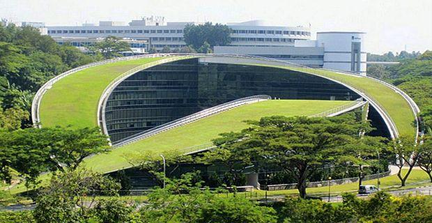 Il tetto verde dell'università di Singapore è un giardino per gli studenti e favorisce la climatizzazione passiva dell'edificio insieme a vasche d'acqua contro in clima tropicale.