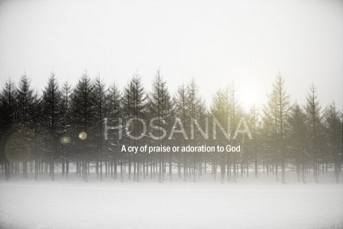 the Word.Jesus, Praise God, Hosanna Prai, Bible Verses, God Grace, Bible Inspiration Praying, Prai God, Bible Inspirationspray, God Scriptures