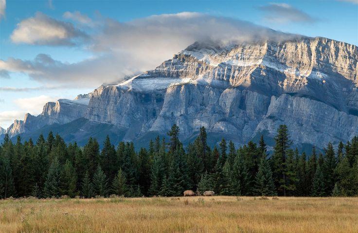 Национальный парк Банф, Альберта, Канада http://muz4in.net/dir/krasota/nacionalnyj_park_banf_alberta_kanada/11-1-0-4129