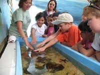 Florida Keys & Key West vacation planning --aquarium