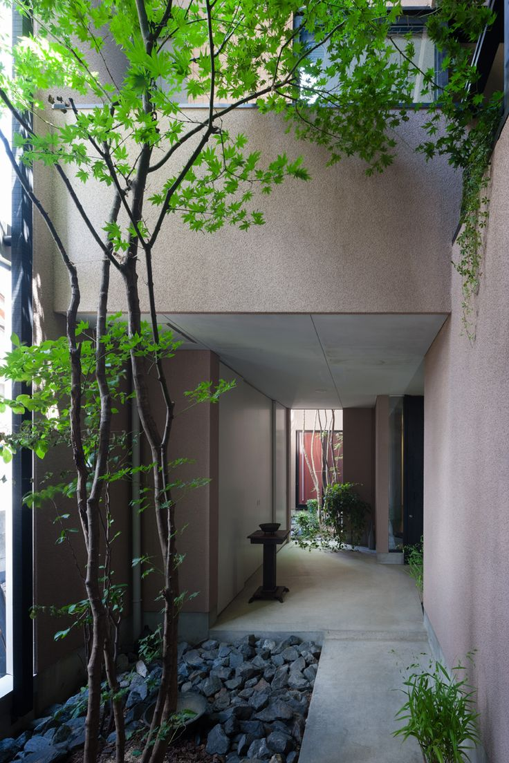 entrance garden, Yamamoto, Masatsugu Architects | Forest Court House
