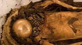 05 - Los arqueólogos encontraron semillas de palta en Perú que fueron enterradas con momias incas que datan hasta del año 750 aC. y hay evidencias de que se cultivó en México en épocas muy temprenas. Después de la llegada de los españoles y de la conquista de América, la especie se diseminó a otros lugares del mundo