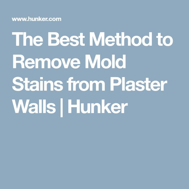 The Best Method to Remove Mold Stains from Plaster Walls | Hunker