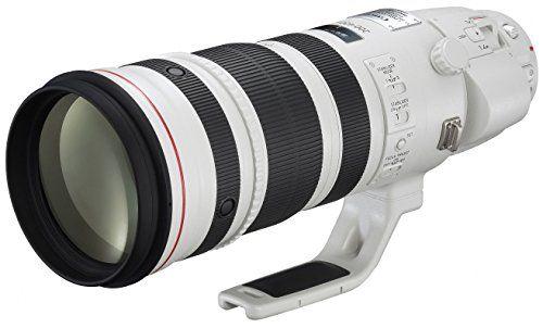 Canon 望遠ズームレンズ EF200-400mm F4 L IS USM EXTENDER1.4× フルサイズ対応 キヤノン http://www.amazon.co.jp/dp/B00CRU42OQ/ref=cm_sw_r_pi_dp_aYIxwb0NE2T9B