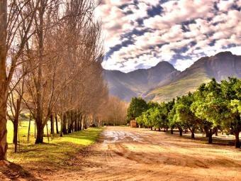 Waterford, Stellenbosch