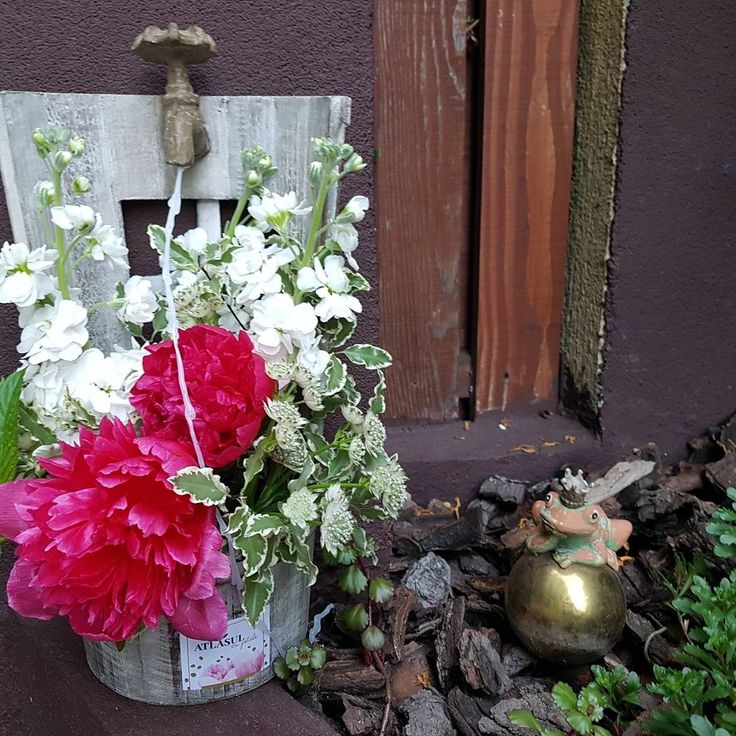 La cismeaua cu bujori Flower arrangement with peonies and matiola