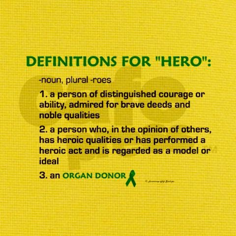 what is the definition of a hero