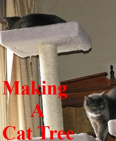 Cat Tree Plans You Can Use To Make Homemade Cat Trees - If you have a cat that has a scratching problem then making a homemade cat tree is the thing to do.