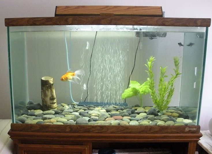 Decorations Unusual Fish Tank Decorations With Wooden Frame And Glass Panels Also Gravel Aquarium Decor E
