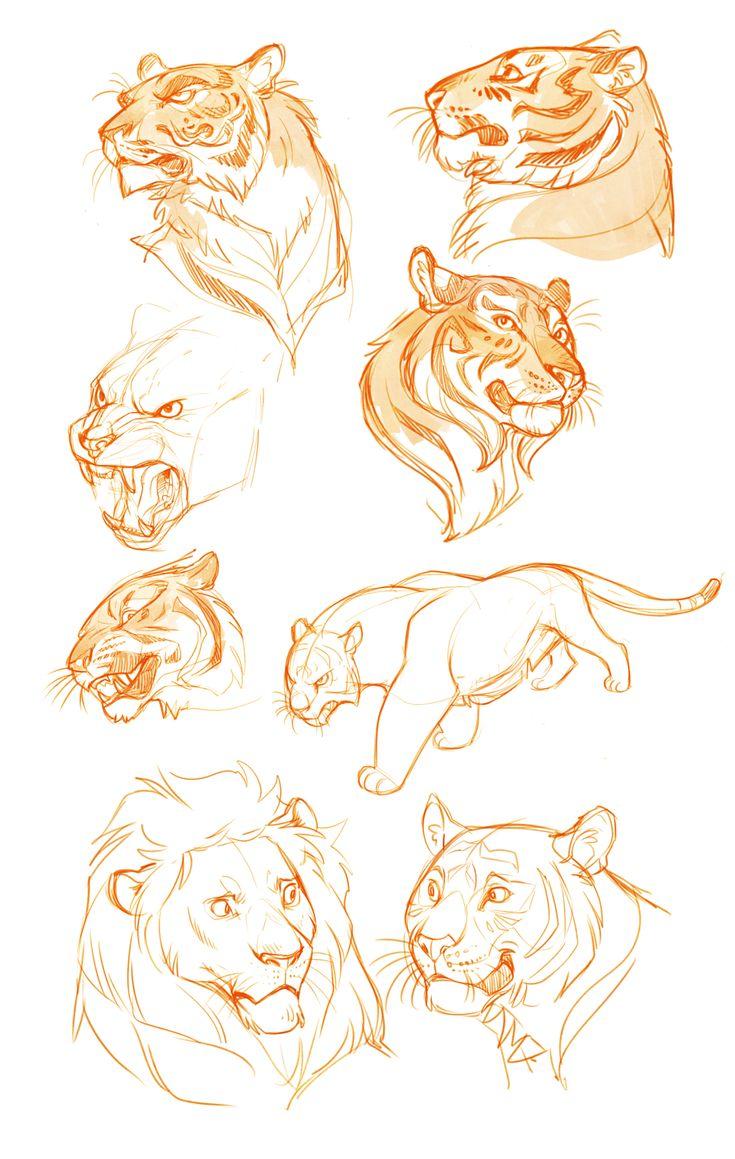 Tiger practice sketches by Drkav.deviantart.com on @deviantART