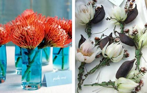 Pretty Proteas for every wedding day