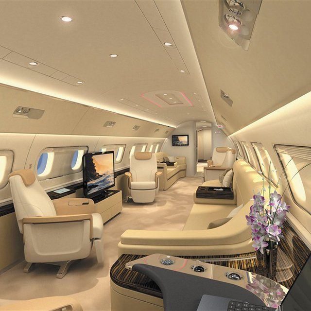 Fancy - Embraer Lineage 1000 Cabin.  Now THAT is one of the coolest evacuation transport tool weve ever seen.