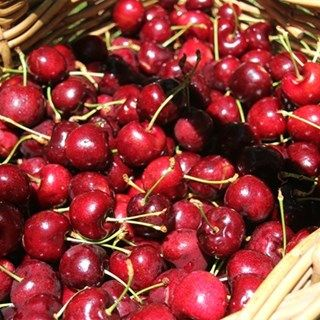 Red Hill Cherry and berry Farm