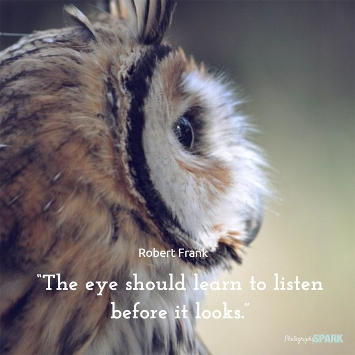 List of 23 photography quotes on Photography Spark including this one: The eye should learn to listen before it looks.