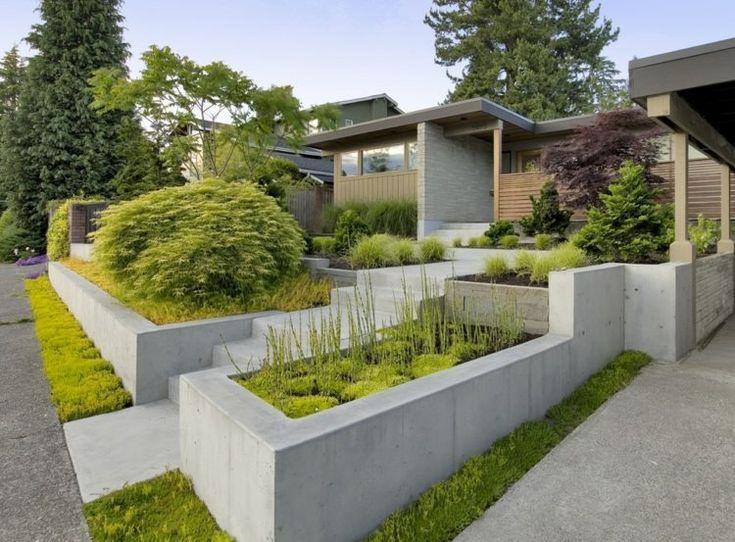 vorgarten anlegen - hochbeeten aus beton und immergrüne pflanzen,