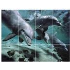 Dolphin Photo Bathroom Shower Tile Mural 36 x 48 - Contemporary - Tile Murals - by Picture-Tiles