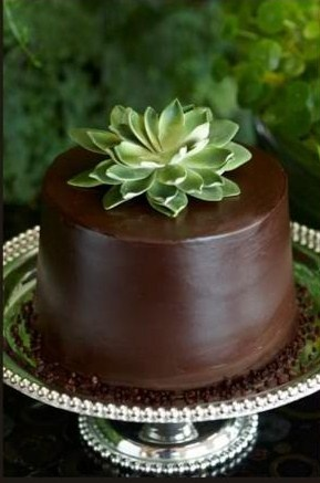 dark chocolate creme cake....