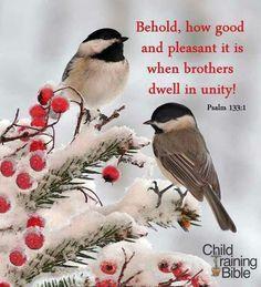 Psalms 133:1