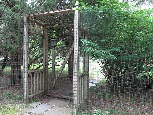 Almost Invisible Deer Fence Garden Ideas Pinterest