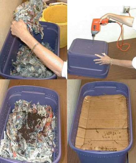 Do You Know How To Make A Worm Composting Bin?-Here Is A