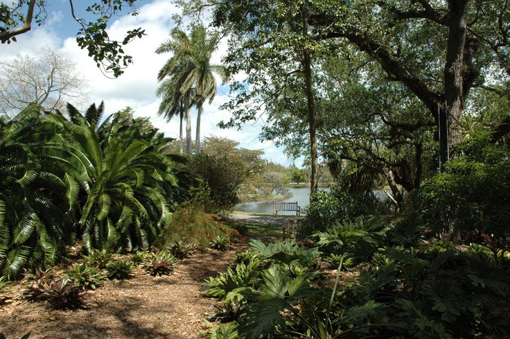 86 Best Images About Fairchild Gardens Miami Florida On