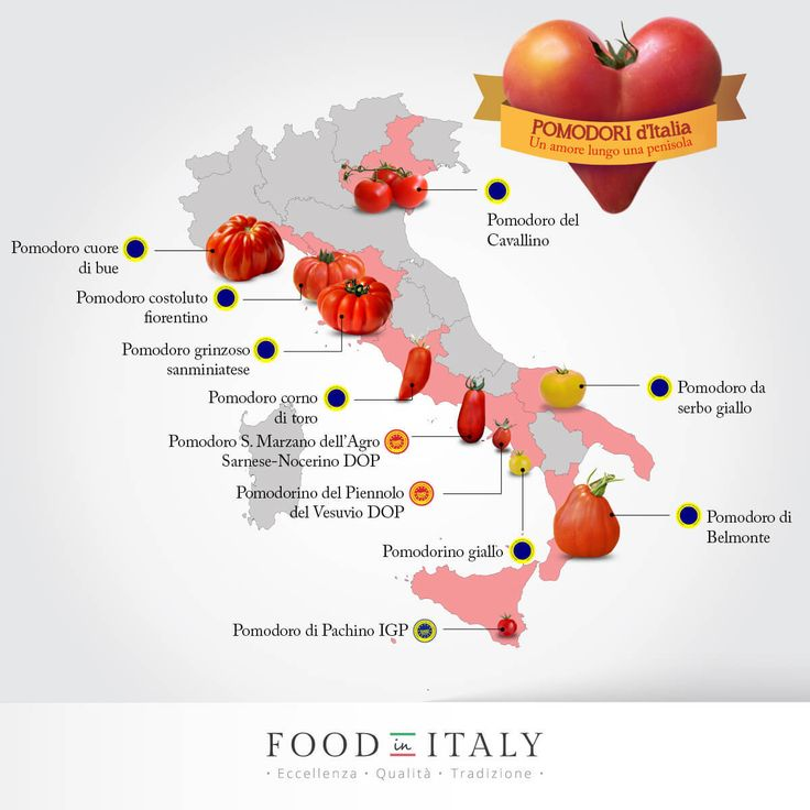 An interesting map of tomatoes in Italy and which part of the country they are from