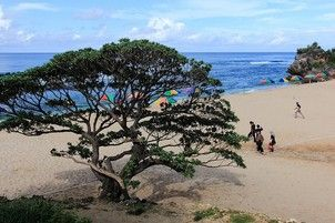 Pantai POK Tunggal-Yogyakarta