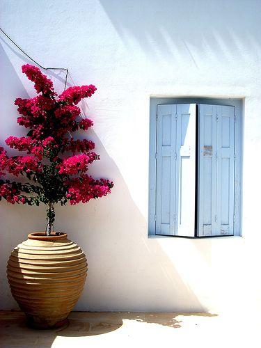 Façade blanche #bougainvillier #terrasse