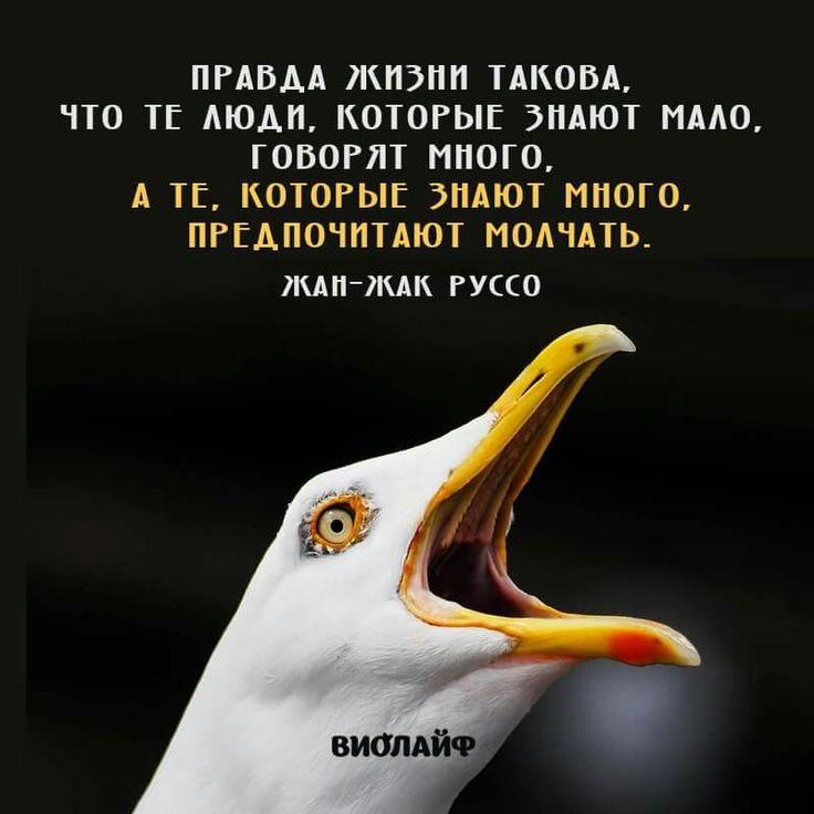 ЖАН - ЖАК РУССО