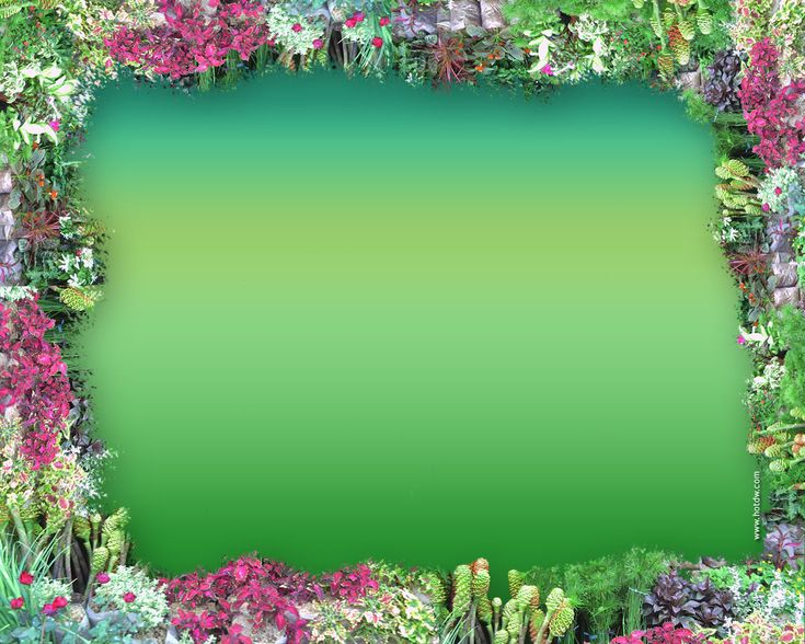 pretty frames for pictures online | Full Color Digital Frames - A great base for gift coupons, tags, cards ...