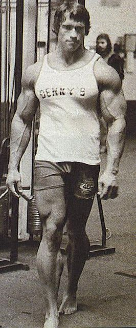 Arnold Schwarzenegger Big Muscles Bodybuilder Movie Star California Governator M1T by Tall Fool, via Flickr