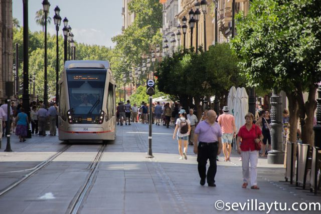 El tranvía en Sevilla hoy.  #Sevilla #Seville #sevillaytu @sevillaytu
