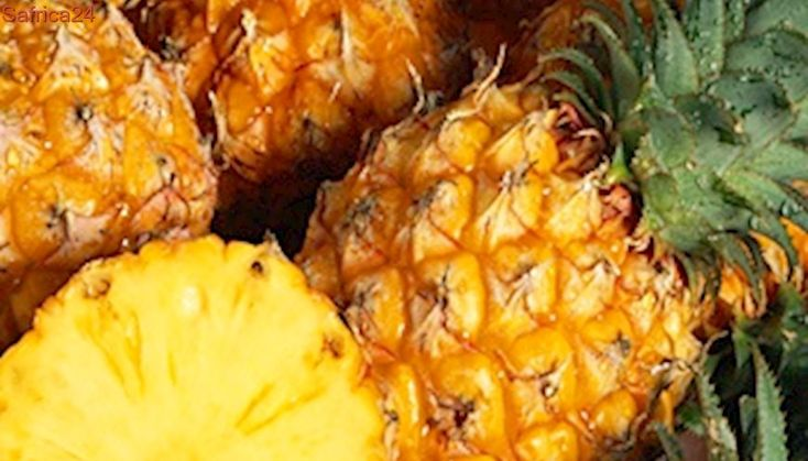 Spain, Portugal seize cocaine hidden in pineapples