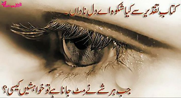 poetry urdu shayari about dil in two lines images dil shayari pinterest urdu poetry and