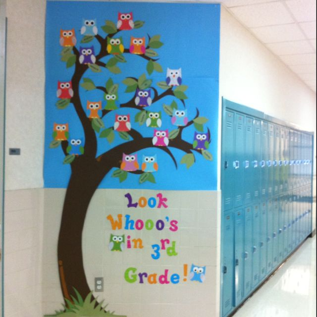Adorable back to school bulletin board owl theme look whooos in grade
