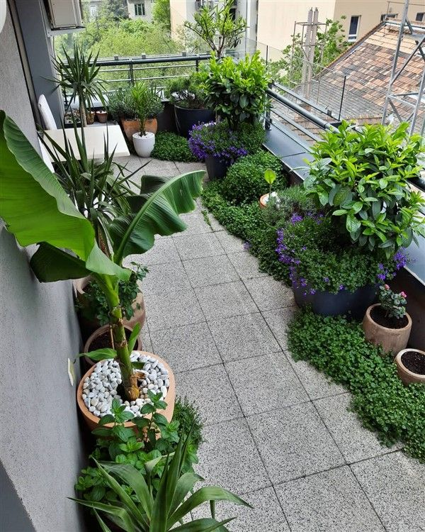 35 Balcony Garden Ideas For Small Apartment Unique Balcony Garden Decoration And Easy Diy Ideas Urban Gardening Balcony Balcony Garden French Country Garden Decor